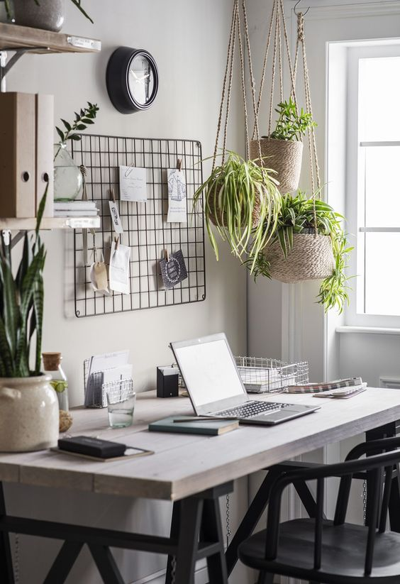 37 Indoor Hanging Plants Ideas To Decorate Your Home Page 36 Of 37 Vimdecor